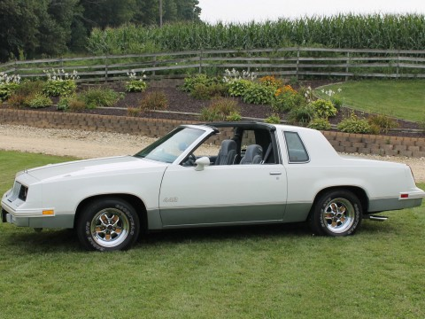 1985 Oldsmobile 442 for sale
