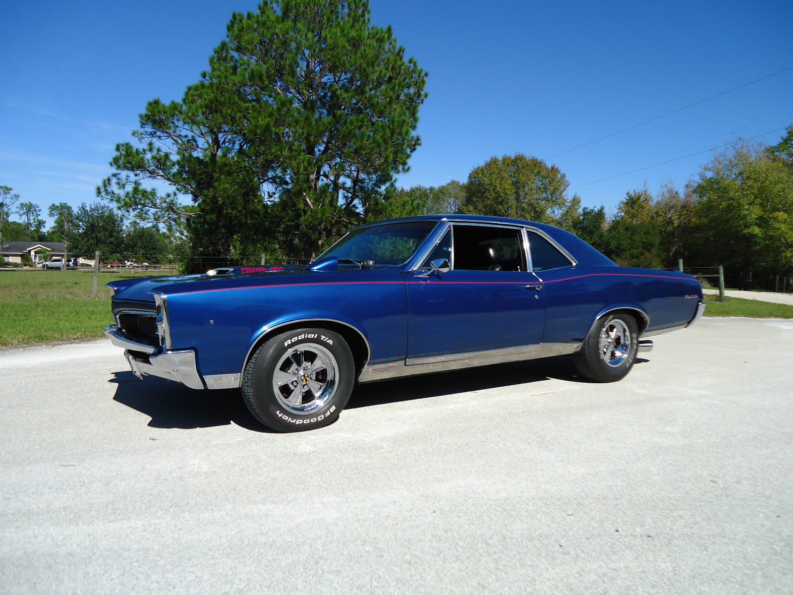 1967 pontiac gto tribute pro touring 427 for sale. Black Bedroom Furniture Sets. Home Design Ideas