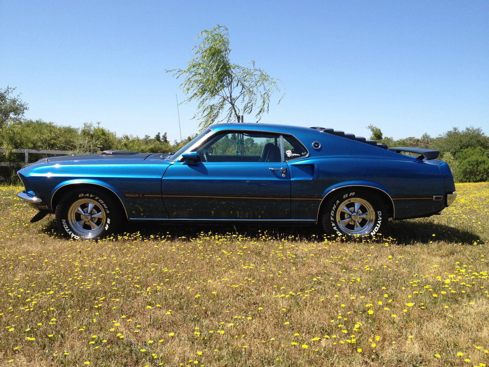 1969 ford mustang mach 1 m code shaker for sale. Black Bedroom Furniture Sets. Home Design Ideas